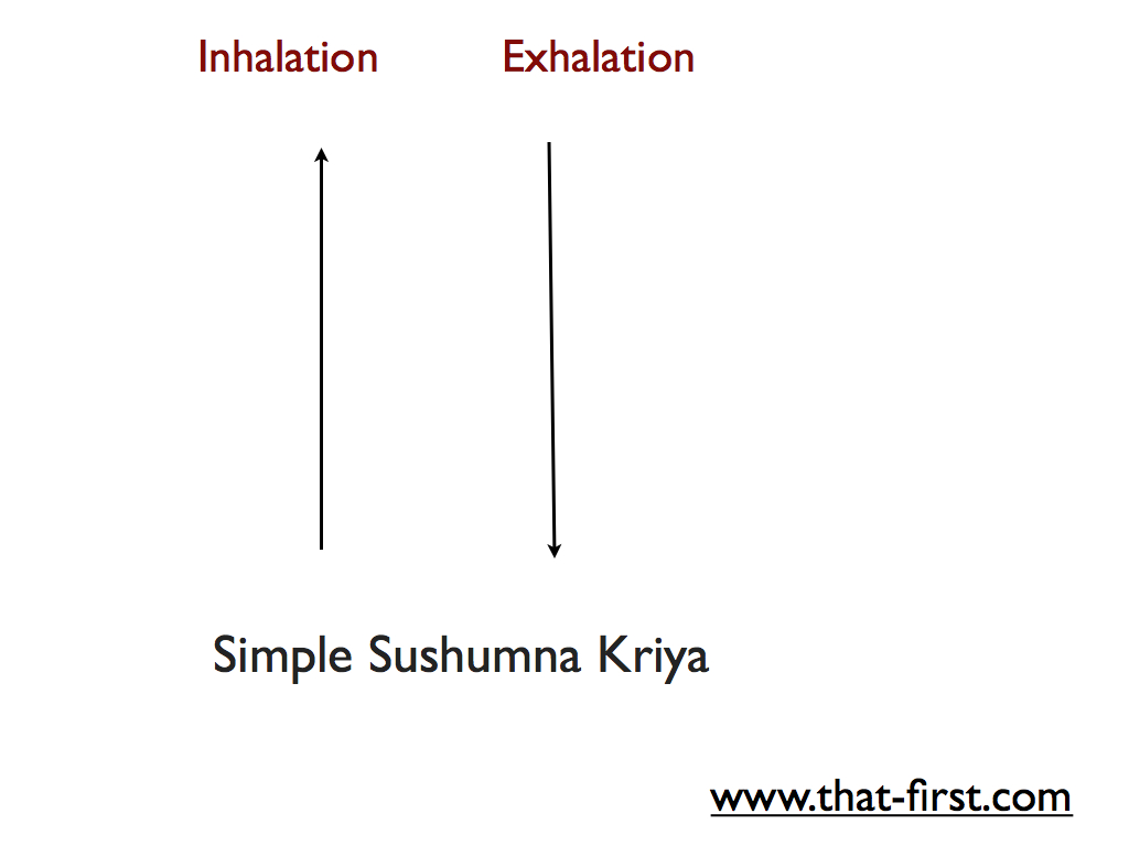Simple Sushumna Kriya
